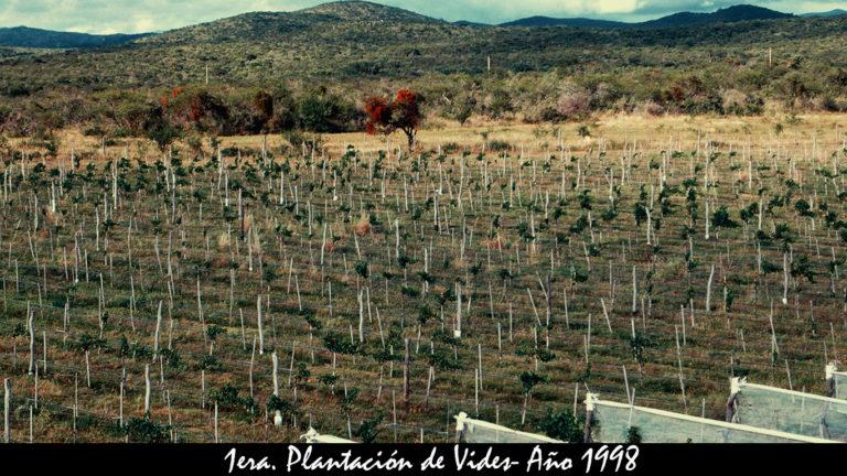 PRIMERAS VIDES 1998 carrousel x768